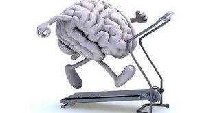 cerebro-ok-644x362