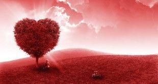 mindalia-pautas-cocrear-sueños-corazon
