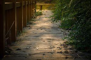 puente-Cori-lado
